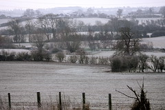 frost on fields (peet-astn) Tags: trees fence frost fields buckingham hedges