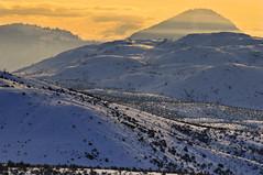 Sunrise Hills (Tim Ennis) Tags: winter wild snow canada cold west nature landscape tim bc desert lac columbia du sage land british kamloops ennis grassland range sagebrush bois semiarid