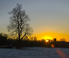 Sunset (Ben124.) Tags: winter sunset sky sun snow tree evening coulsdon golddragon impressedbeauty infinestyle colourartaward