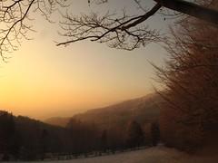 like painted (**MIKA**) Tags: winter nationalpark bayrischerwald casperdavidfriedrich mywinners abigfave