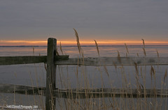 Sunrise Over The Barnegat Bay (scottnj) Tags: winter sky ice clouds sunrise fence newjersey nj bayville barnegatbay naturepoetry platinumheartaward rubyphotographer scottnj sunriseoverthebarnegatbay
