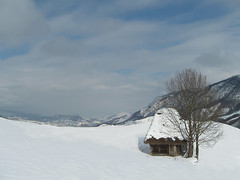 Doar o cas -un copac.. n iarn (heticobai) Tags: winter rural countryside village hiver pueblo romania sat transylvania inverno transilvania carpati roumanie apuseni erdly transilvanie iarna rumunsko roemeni karpaty karpaten ardeal woodenarchitecture siebenbrgen aranyos carpathianmountains rumunia kartpostal transsylvanien transylwania oureurope  siedmiogrd transilvnia valeaariesului salciua  transilvanija sedmohradsko carpinginthecarpathians  transsylvani sedmihradsko eeecotourism szigethegysg bedell masivulbedeleu alsszolcsva grytrascu transilbania seofonbyri transsilvnia    treuzsilvania erdelprenslii