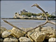 Talmont sur Gironde (lo46) Tags: sea mer france water atlantic cote église rochers bastide sainteradegonde gironde talmont estuaire carrelet charentemaritime poitoucharentes talmontsurgironde estuairegironde plusbeauxvillagedefrance églisesteradegonde