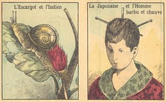 ev escargot japon
