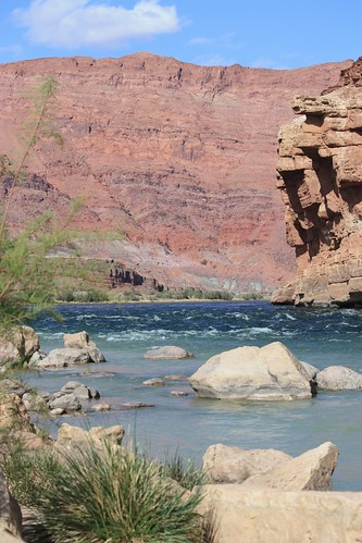Colorado River Lees Ferry