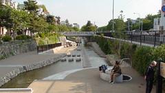 Horikawa River, Kyoto
