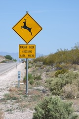 "A ""Major"" Deer Crossing (stits) Tags: sign desert post notice nevada deer nv roadsign signpost wilderness trafficsign signboard guidepost warningsign deercrossing deersign majordeercrossing"