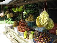 IMG_0503 (Swinkey) Tags: bali fruit indonesia banana durian jackfruit ubud rambutan mangosteen