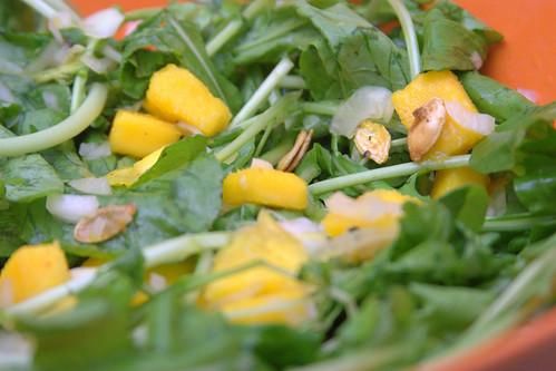 Salada de Manga e Rúcula