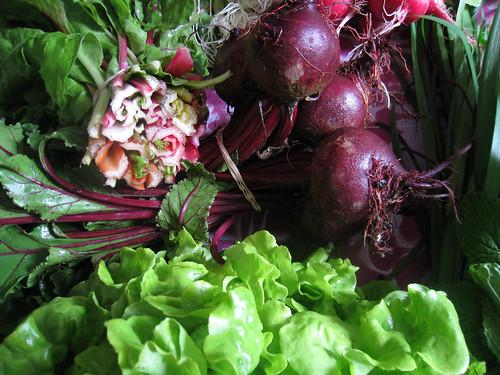 Veggie Box: Week 3