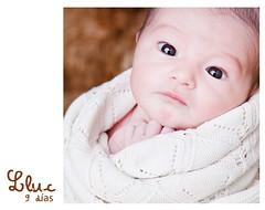 Lluc (Lil' Ann Photography) Tags: baby cute look studio fur hands soft little estudio lindo lil bebe mirada manita suave peque pelo 9days lluc chinijo 9dias babyborn cliente reciennacido comissioned notmyson larvita