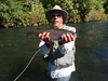 Chunky Pit River 'Bow
