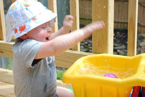 Sammy splashing