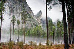 The Floor of Yosemite in Winter.jpg (YOSEMITEDONN) Tags: california snow mountains beautiful beauty fog clouds nationalpark yosemite wowiekazowie treesbeautiful