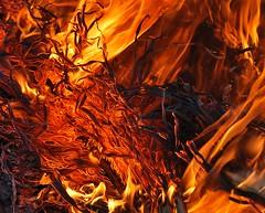 Hipnótico (donmoscardon) Tags: color fuego texto d60
