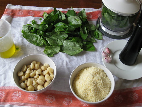 3265785547 ef6a238ca1 How to Make Basil Pesto Sauce