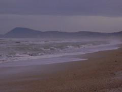 Prospettiva: verso sud (mononeuronico) Tags: sea italia mare senigallia sabbia ancona wintersea monteconero maredinverno mareadriatico adriaticcoast spiaggiadivelluto