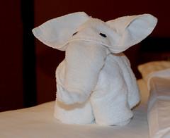 DSC_1235_e1 (havemorecake) Tags: cruise towels