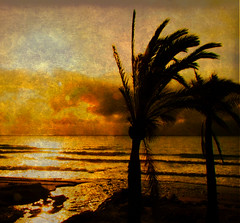 The sun above the clouds (Steve-h) Tags: sun texture clouds palms spain europa europe waves eu finepix fujifilm marbella ghostbones blueribbonwinner steveh mywinners abigfave royalgroup aplusphoto holidaysvacanzeurlaub flickraward citrit memoriesbook platinumheartaward theperfectphotographer shiningstar flickrestrellas peaceawards s100fs quarzoespecial favemoifrance magicartoftextures themonalisasmile visionqualitygroup visionquality100 arttouch marbella0809 platinumpeaceaward universeofnature
