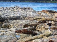 run (jricksen) Tags: ocean seaweed youth speed real fun movement rocks waves run carmel granite moment athlete