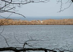 Chesapeake Bay View From Condit Pond