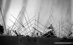 Spikes (mambastic photography (aka mamba909)) Tags: laphotocontest09