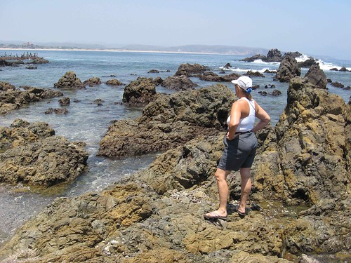 Admiral checks out the Tenacatita tide pools