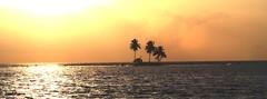 3 Palm Island (DPS Photography) Tags: ocean sunset sumatra tranquility palm tropicalisland thunderstorm isolation mentawaiiislands