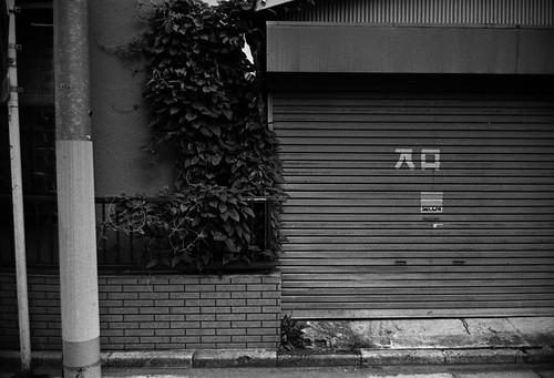 20090610-日暮里散歩。