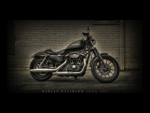 Flickriver Photoset Dream Bike Harley Davidson Iron 883 By Ruvidesign