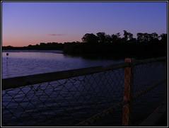 Redcliffesunset (Liannamaye) Tags: bridge sunset pelicans water birds pine pelican rivers redcliffe digitalcameraclub hornibrook