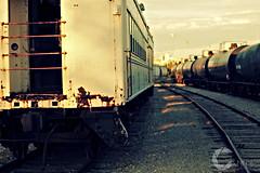 Traincars_exterior_2