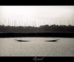 Forgotten... (chhayapath :-)) Tags: life sky bw white love water fence river boat canal monotone bamboo forgotten balck sunken ju bangladesh bangla chhayapath gadhamanob