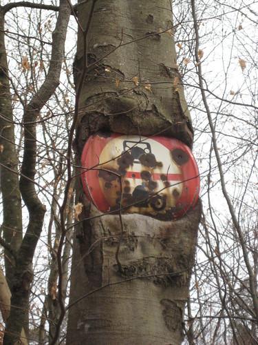 Baum essen Schild auf