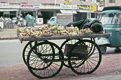 Siesta (Batool Nasir) Tags: street pakistan fruit nap afternoon banana siesta editorial vendor cart karachi seller allrightsreserved filmphotography 35mmfilmformat ©batoolnasir