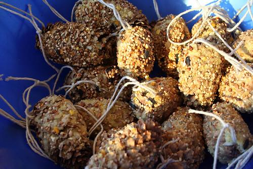 pine cone feeders
