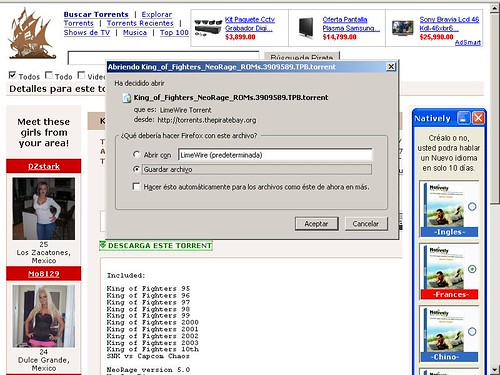 Guardando un torrent a la computadora