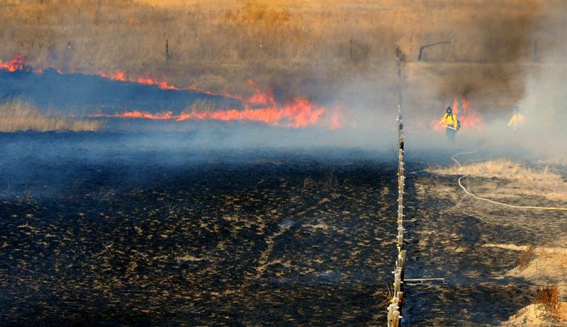 20090119_GRASS_FIRE_FLAMES
