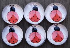 Ladybugs - Glass Pebble Magnets (Daisy Mae Designs) Tags: red white black glass set lady bug handmade craft spot pebble daisy ladybug designs mae marble etsy magnet dawanda ksickles