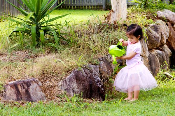 My Gardening Fairy...