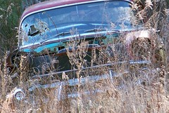forgotten Chevy (Dave* Seven One) Tags: rot history abandoned nature neglect rust time decay rusty forgotten past dents fallingapart abandonedcheverolet
