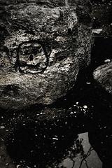 Happy rock is happy (mambastic photography (aka mamba909)) Tags: laphotocontest09