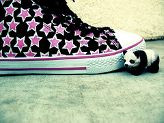 Every Panda Cat needs pink shoes... (Lady Pandacat) Tags: portrait black self outside shoes panda sixwordstory mexican pout yeartwo hispanic latina 2009 acidwash pinkstars fantabulous catchycolorspink fgr 365days pandacat canong9 pandacatbaby tinaangel unsionbay sonotconversethough ilovemylittlepanda helooksalittledirtybuthegoeswithmeeverywhere yeahiknowimpale ladypandacatvonnopants
