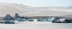 Iceland - Jkulsrln (Fizz & Costy) Tags: blue ice iceland foto movies iceberg tombraider jokulsarlon batmanbegins blueice islanda dieanotherday aviewtoakill glaciallagoon vatnajkullglacier