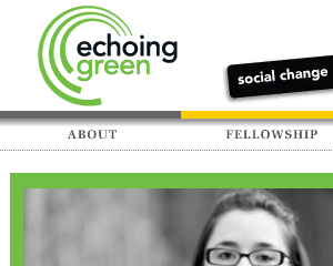Echoing Green Web Site