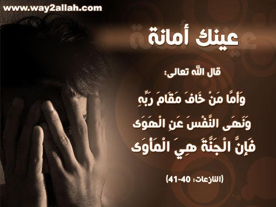 حملة عينك أمانة بالصور 3489773170_0ee18b515