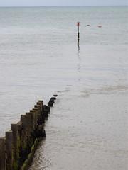 Cromer groyne (Rev Stan) Tags: sea groyne norfolkcromer