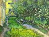 Il giardino del ricovero di Saint Rémy