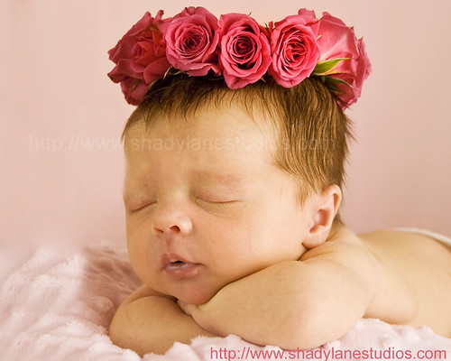 Newborn with Rose Headpiece