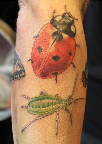 bugs tattoo by Mirek vel Stotker (work in progress)